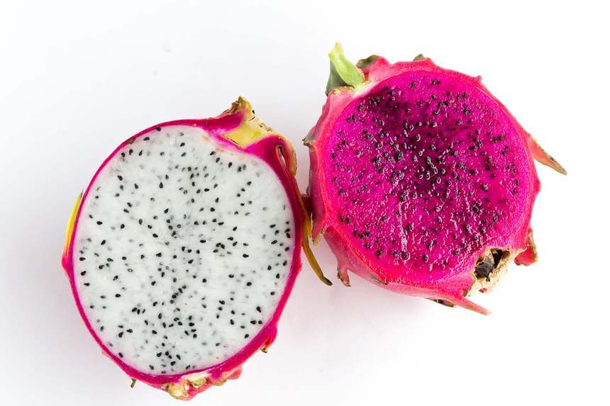 Featured introduction-Dragon Fruit