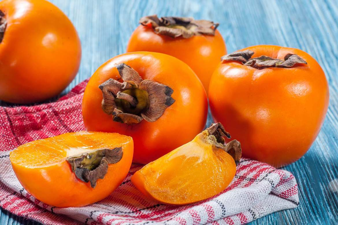 Featured introduction-Persimmon