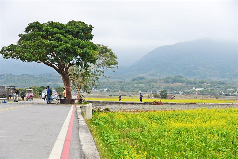From a New Angle and Perspective  Rediscovering Taitung