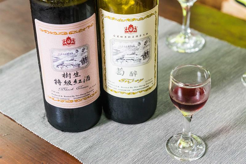 Making the Wine of Gold Medal  Must-Visit Winery in Taiwan
