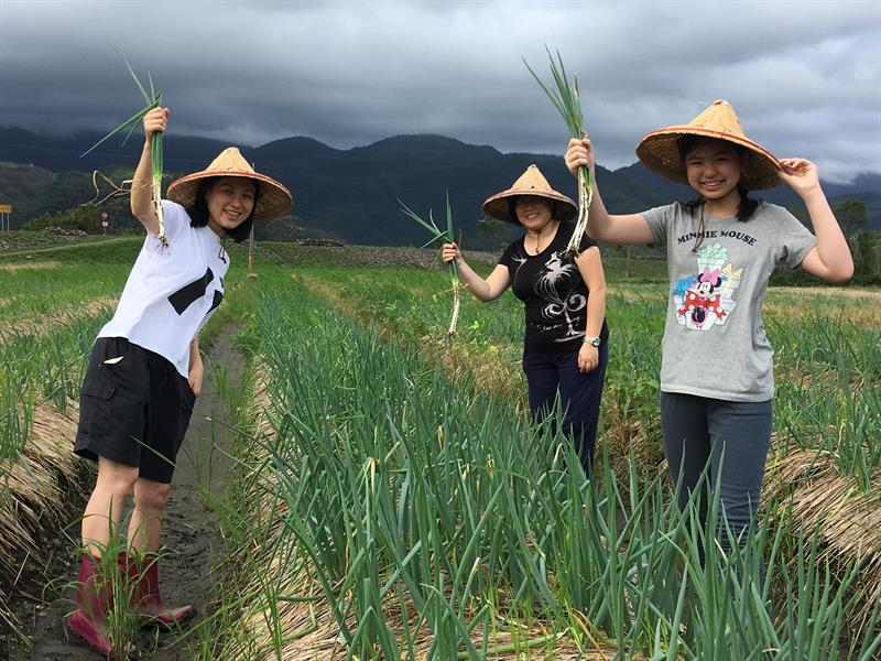 Young People Returning Home: Fresh Troops of Leisure Agriculture